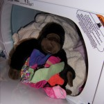 Yes, that is a gorilla in the dryer. Why do you ask??